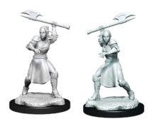 WZK90379 • Half-Elf Echo Knight & Echo Female • $4.99