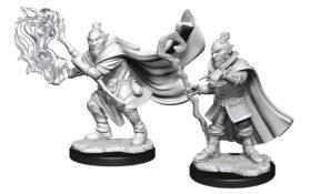 WZK90389 • Hobgoblin Wizard & Druid Male • $4.99