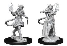 Tiefling Sorcerer Female (WZK90304)