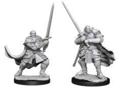 Half-Orc Paladin Male (WZK90307)